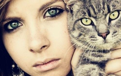 девушка и кошка, egoel