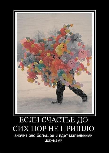 Счастье демотиваторы 16 (461x650, 40Kb)