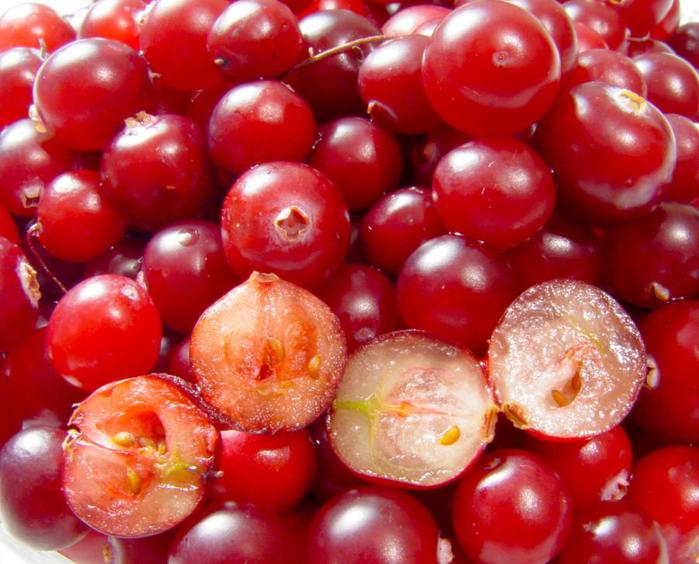 cranberries (700x564, 61Kb)