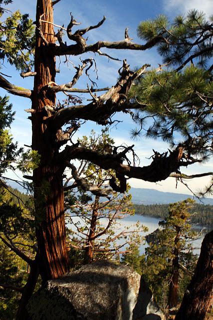 Озеро Тахо – курортный рай Америки 49851