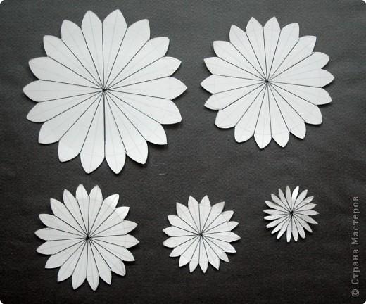 для других видов цветов,