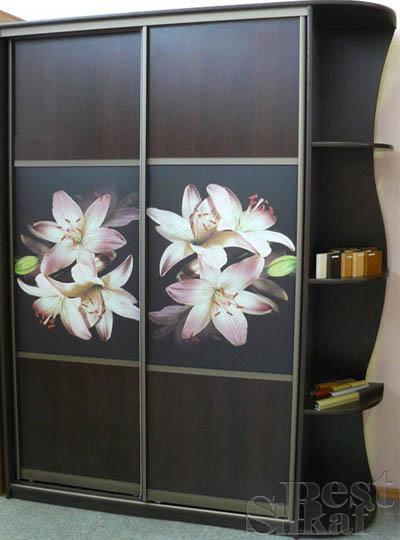 Красивые рисунки на шкафах купе - фотопечать 14 (400x540, 27Kb)