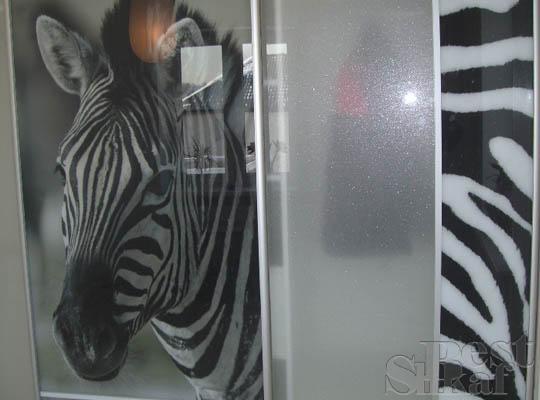 Красивые рисунки на шкафах купе - фотопечать 18 (540x400, 28Kb)