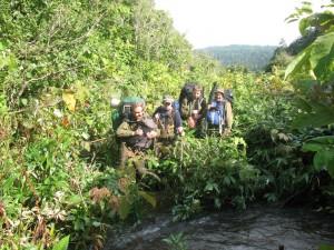 фото экстрим джунгли (300x225, 36Kb)