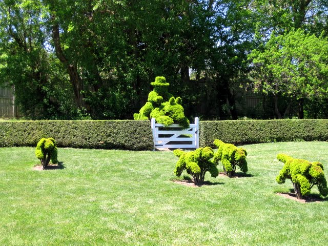 Ladew Topiary Gardens 26594