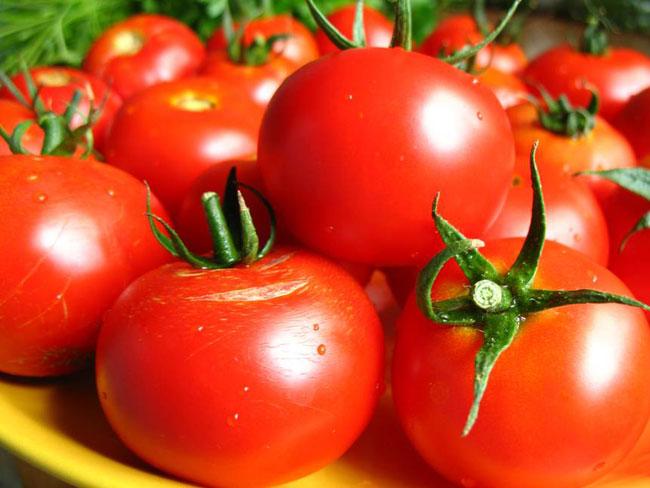 помидоры (650x488, 62Kb)