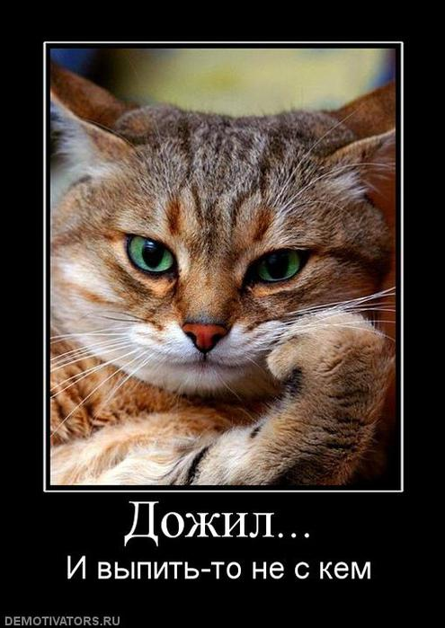 638706_dozhil (495x700, 53Kb)