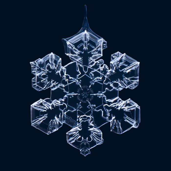 Matthias_Lenke_snowflakes_1 (700x700, 80Kb)