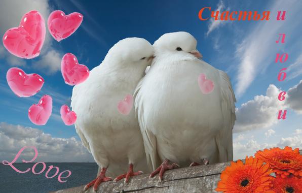 счастье и любовь/4348076_schastyailubvi (596x380, 116Kb)