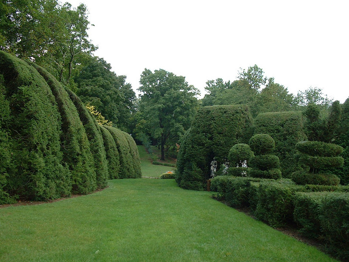Ladew Topiary Gardens 21579
