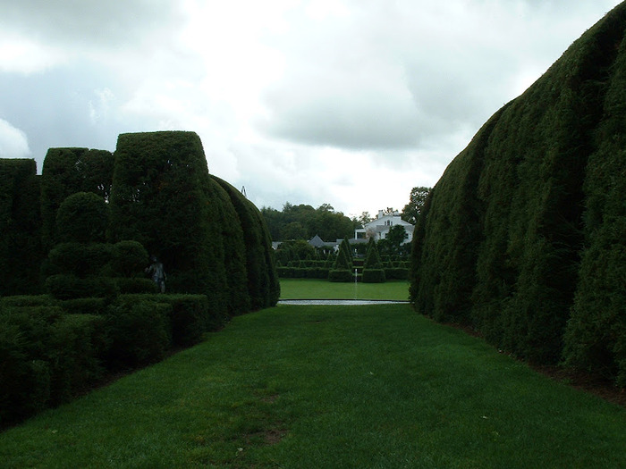 Ladew Topiary Gardens 83899