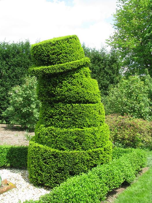 Ladew Topiary Gardens 30288