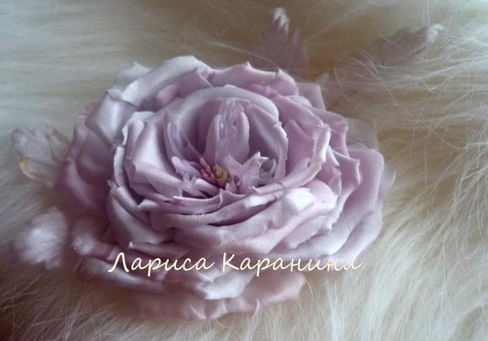 спектакль, роза жемчужная 062 (700x489, 219Kb)