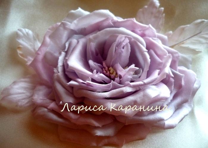 спектакль, роза жемчужная 068 (700x498, 245Kb)