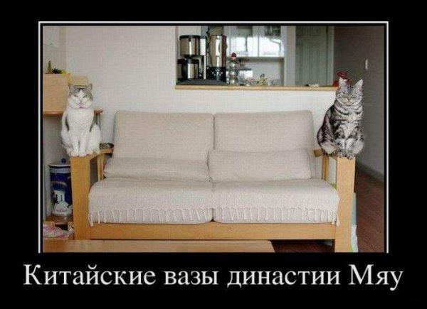 3422701_1327651777_0_7bd21_23a132a0_orig (600x435, 41Kb)