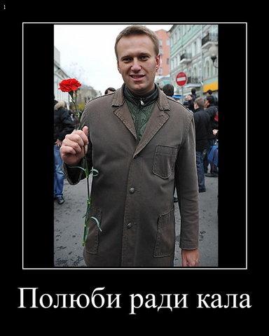 Новости 2012, интересно, лучшее, Алексей Навальный, перевыборы, голов, революция,/4800611_s640x480_4 (384x480, 31Kb)