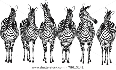 stock-vector-zebras-78613141 (450x273, 55Kb)