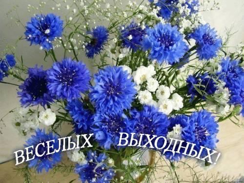 4631441_680913925 (500x375, 46Kb)