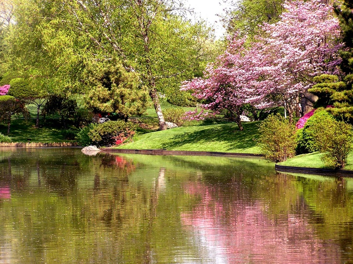 Весна природа красивая 22 (700x525, 287Kb)