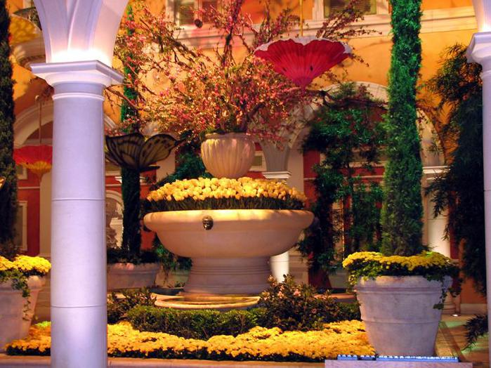 Bellagio-flowerbeds-7164 (700x524, 79Kb)