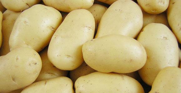 картошка (579x300, 27Kb)