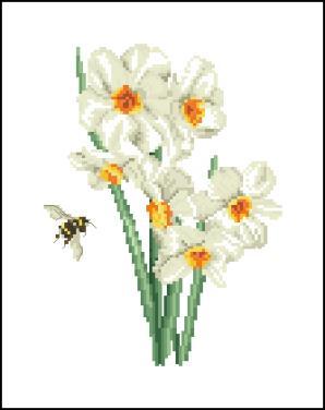 3937664_Narcis (298x376, 13Kb)