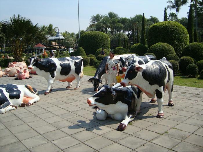 Парк Нонг Нуч (Nong Nooch Tropical Garden) 60199