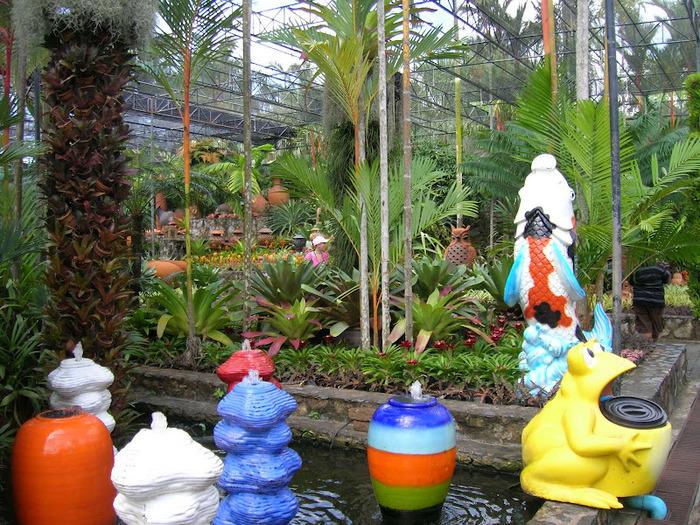 Парк Нонг Нуч (Nong Nooch Tropical Garden) 36677