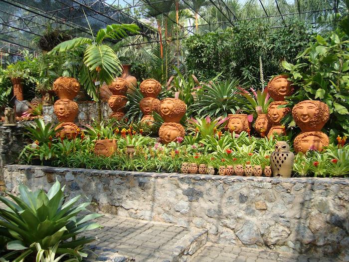 Парк Нонг Нуч (Nong Nooch Tropical Garden) 70764