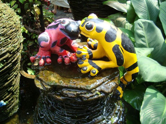 Парк Нонг Нуч (Nong Nooch Tropical Garden) 22015