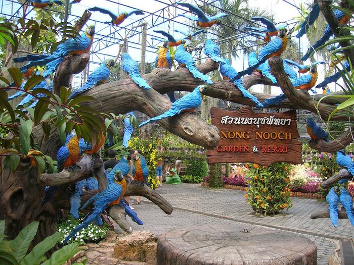 Парк Нонг Нуч (Nong Nooch Tropical Garden) 38832