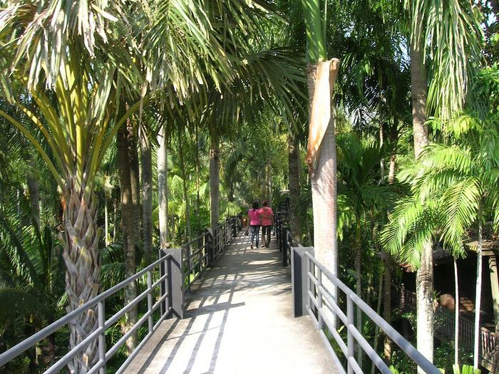 Парк Нонг Нуч (Nong Nooch Tropical Garden) 50095