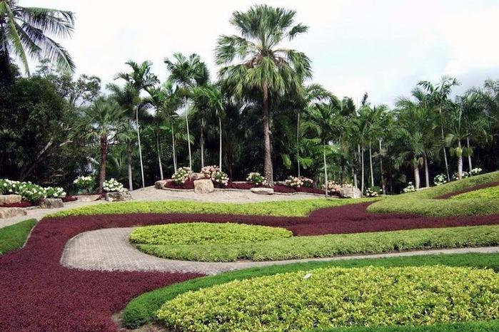 Парк Нонг Нуч (Nong Nooch Tropical Garden) 57327