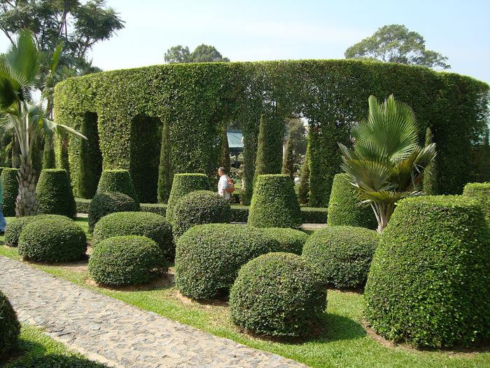 Парк Нонг Нуч (Nong Nooch Tropical Garden) 99771