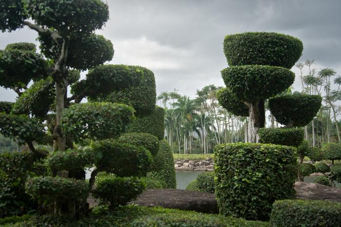 Парк Нонг Нуч (Nong Nooch Tropical Garden) 82077