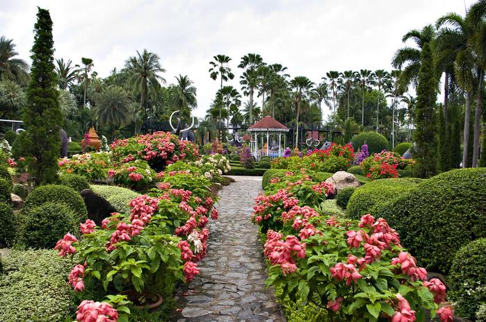 Парк Нонг Нуч (Nong Nooch Tropical Garden) 81048