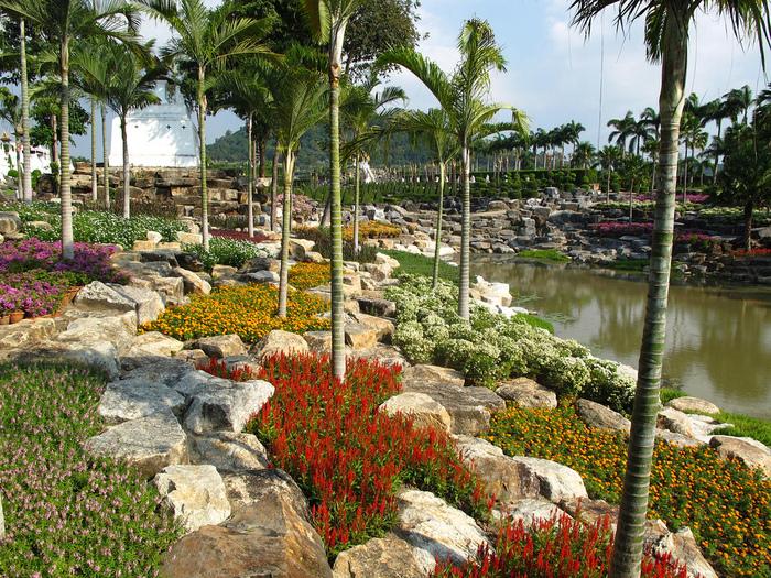 Парк Нонг Нуч (Nong Nooch Tropical Garden) 25944