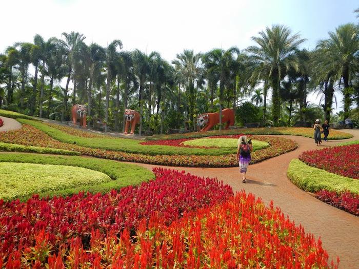 Парк Нонг Нуч (Nong Nooch Tropical Garden) 83257