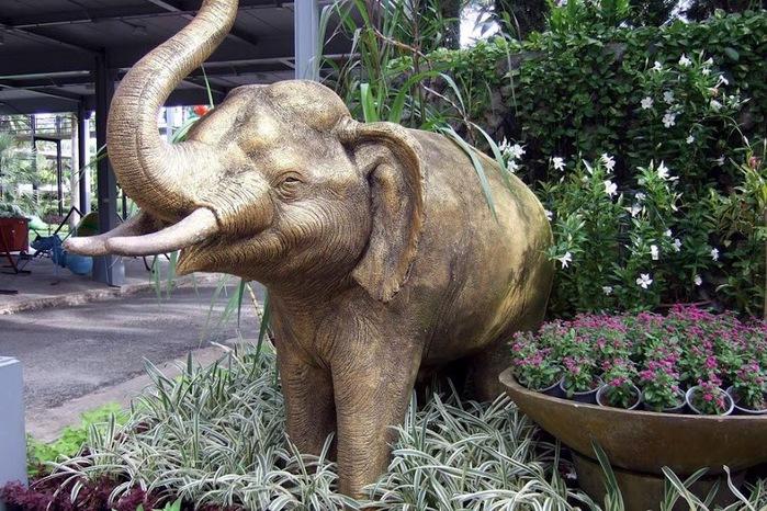 Парк Нонг Нуч (Nong Nooch Tropical Garden) 86253