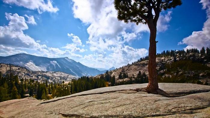 3659752_Yosemite__mp4_20120224_194903_671 (700x393, 120Kb)