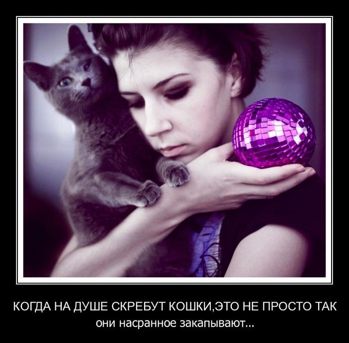 1330047152_demotivator_pak_nomer111_92_bender777post (700x689, 109Kb)