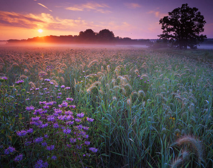 Картинки явлений природы влияющие на изменение земли
