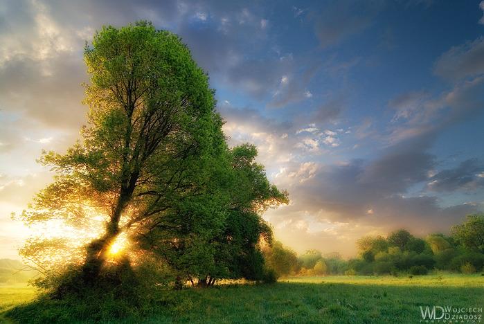 Красивый пейзаж 6 (700x468, 146Kb)