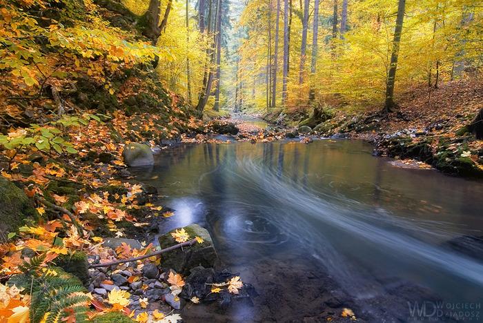 Красивый пейзаж 25 (700x468, 228Kb)