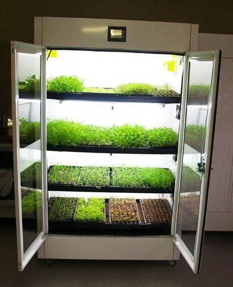 Оборудование выращивания в помещении 865