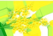 мимоза (217x150, 53Kb)