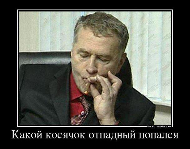 Жириновский и косяк (610x480, 45Kb)