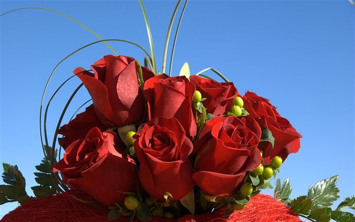 red-roses-bouquet-04475_high (700x438, 49Kb)