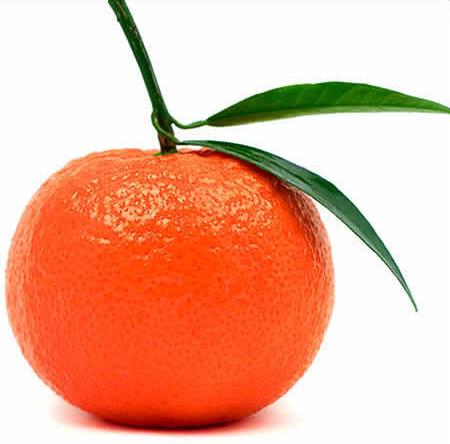 4168331_Mandarin (450x444, 21Kb)