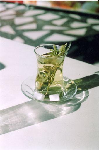 tea-sm (338x510, 36Kb)